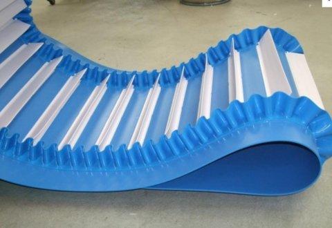 belt conveyor food industry